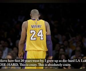24, 8, and NBA image