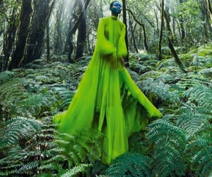 green, lime, and editorial image