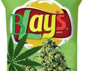 marijuana and weed image