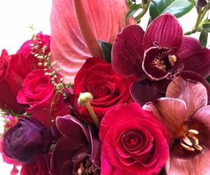 burgundy, maroon, and florals image