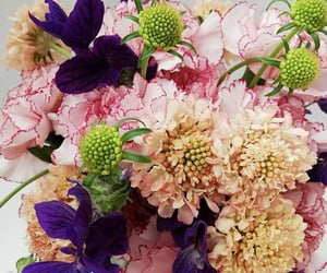 florals, flowers, and fleurs image