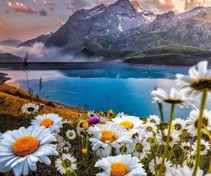 amazing, breathtaking, and places image