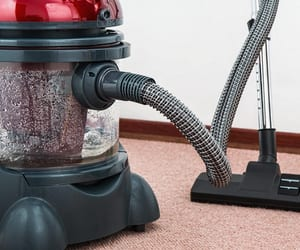 carpet cleaning edmonton and blind cleaning edmonton image