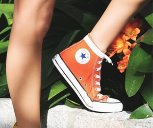 converse, green, and jungle image