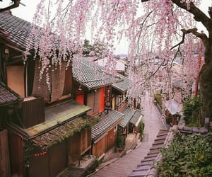 aesthetic, cherryblossom, and kyoto image