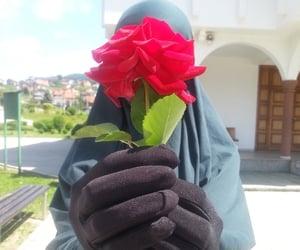 hijab, niqab, and rose image