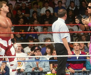 wwe, bret hart, and shawn michaels image