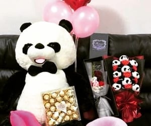 gift, panda, and valentines day image