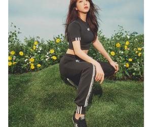 adidas, blackpink, and kim jisoo image