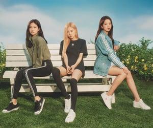 adidas, blackpink, and kim jennie image