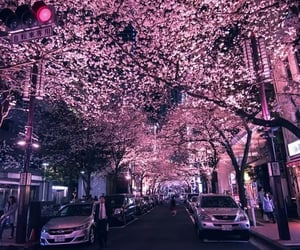 cars, japan, and nightscape image