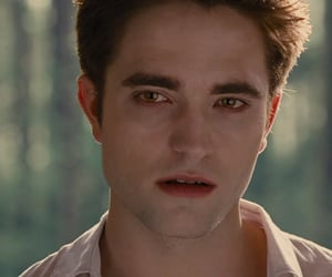 breaking dawn, edward cullen, and twilight image