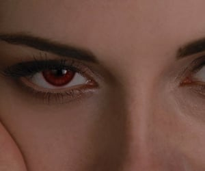 bella swan, movies, and breaking dawn image