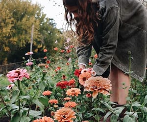 aesthetic, garden, and gardens image