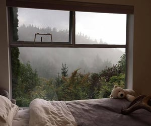 home, nature, and bed image