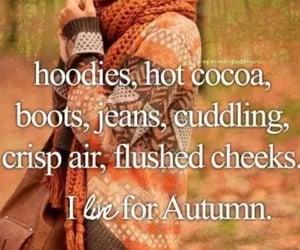 autumn, cuddling, and need image