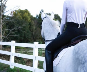 country living, equitation, and equestrian image