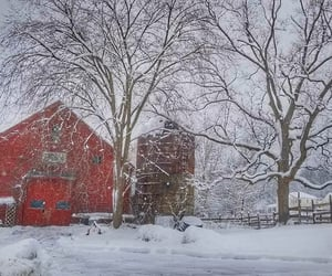 barn, country living, and silo image