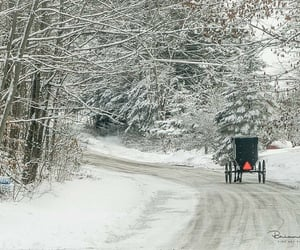 amish, buggy, and country living image