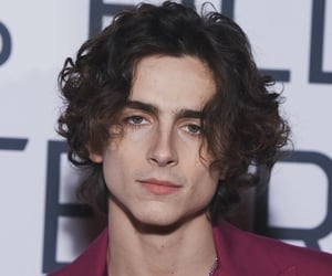 timothee chalamet, little women, and beautiful boy image