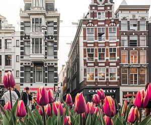 april, architecture, and buildings image