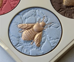 makeup, bee, and blue image