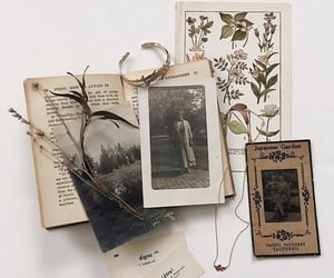 vintage, aesthetic, and book image