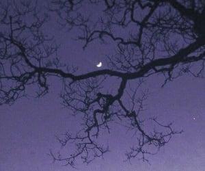 moon, dark, and nature image