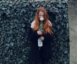 aesthetic, ginger hair, and rose image