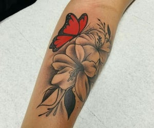 beauty, butterfly, and red image
