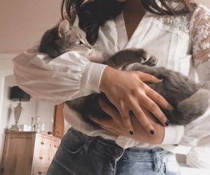 babe, girl, and meow image
