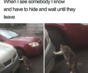 meme, shy, and socially awkward image