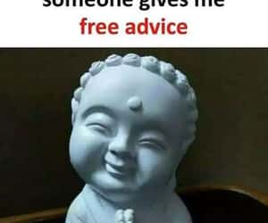 advice, aww, and funny image
