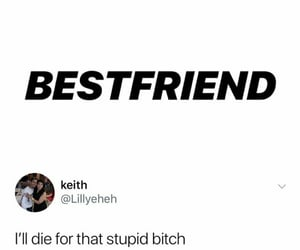best friend, humor, and like image