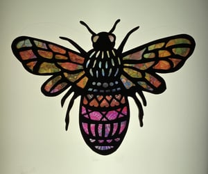 bees, insects, and colourful image