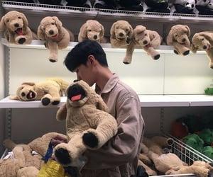 asian, stuffed, and bear image