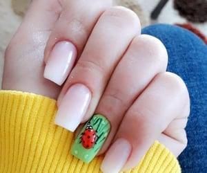 ladybug, nails, and snapchat image