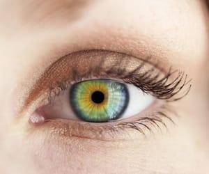blue eye, eye, and brown eye image