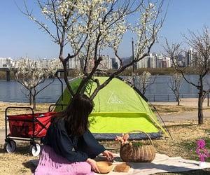 camping, korea, and picnic image