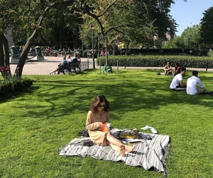 green, park, and picnic image