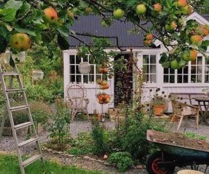 garden, fruit, and aesthetic image