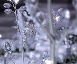 gif, animado, and florecer image