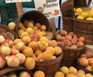 peach, fruit, and yellow image