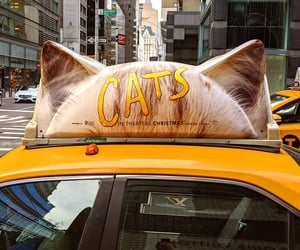 broadway, musicals, and taxi image