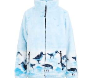 animal, feathers, and bird image