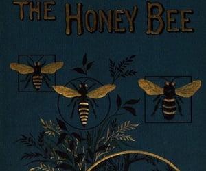 aesthetic and bee image