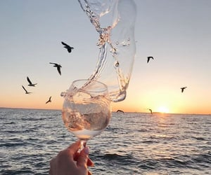 beautiful, birds, and champagne image
