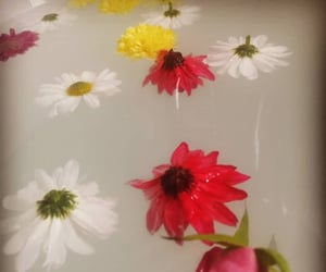 bath, bathrooms, and floral image