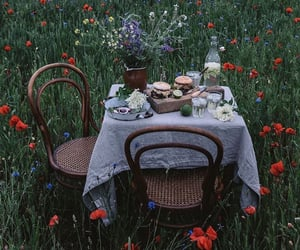 flowers, food, and nature image