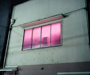 pink, window, and light image